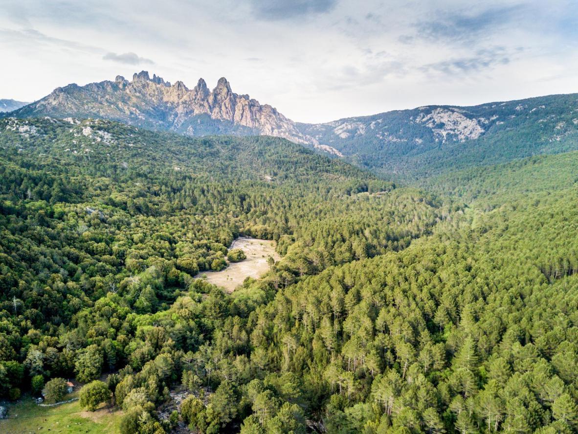 Col de Bavella, una zona conocida por sus ríos bravos, preciosas cascadas, bosques y piscinas naturales