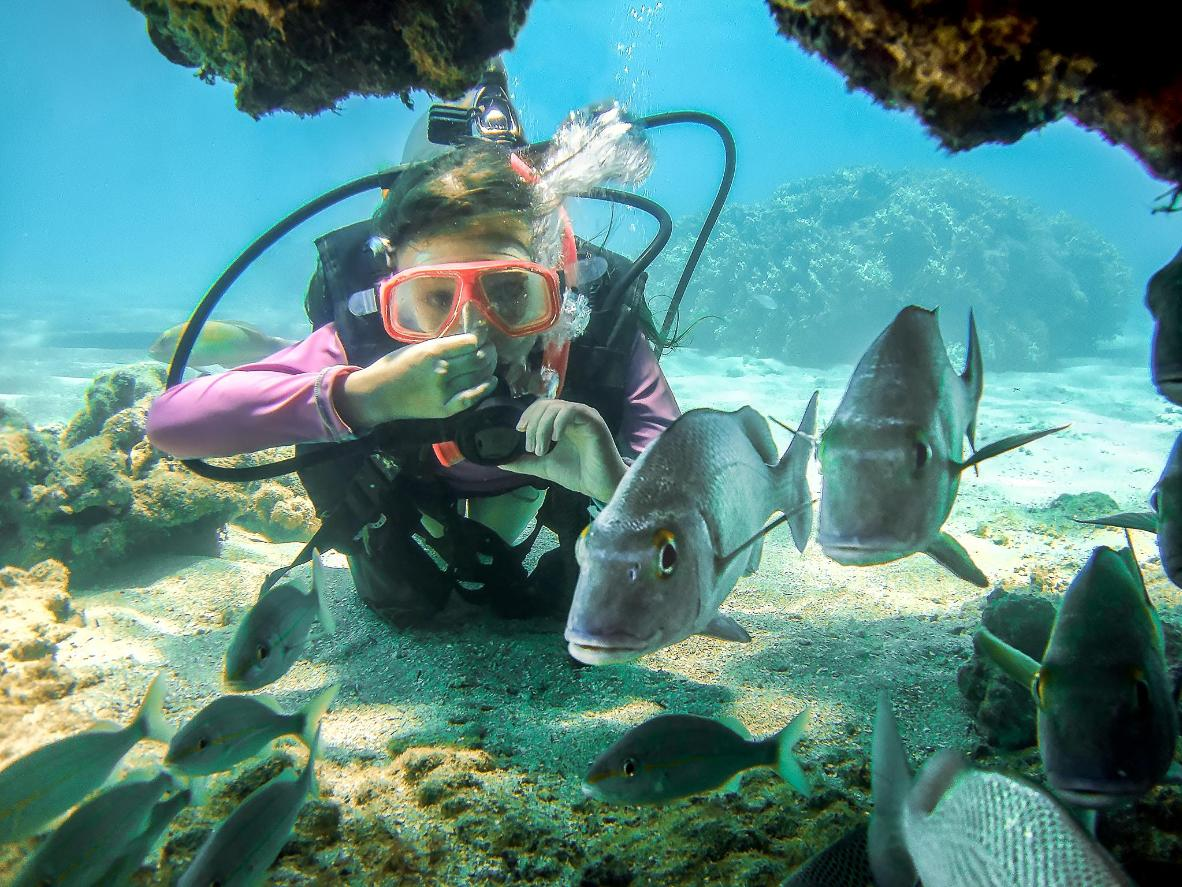 Scuba dive with the fishes