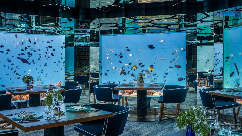 5 Unforgettable Underwater Hotels Booking Com