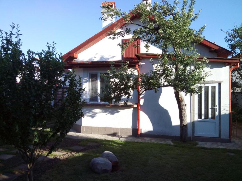 Гостевой дом  Guesthouse Laboro  - отзывы Booking