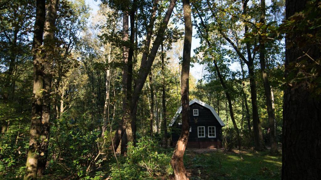 Дом для отпуска  Boshuis Krekeltje  - отзывы Booking