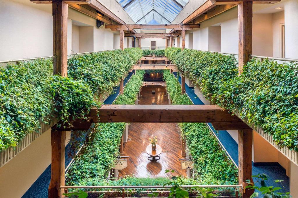 Отель  Hawthorn Suites by Wyndham Rome  - отзывы Booking