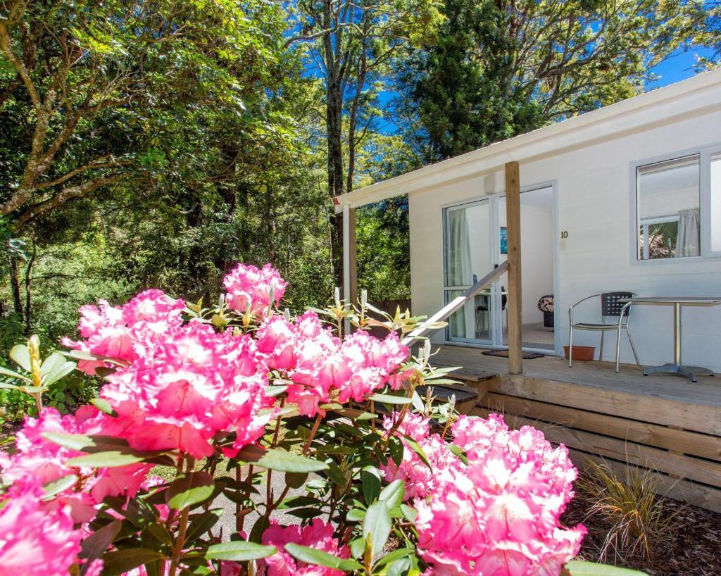 Комплекс для отдыха  Ohakune TOP 10 Holiday Park  - отзывы Booking