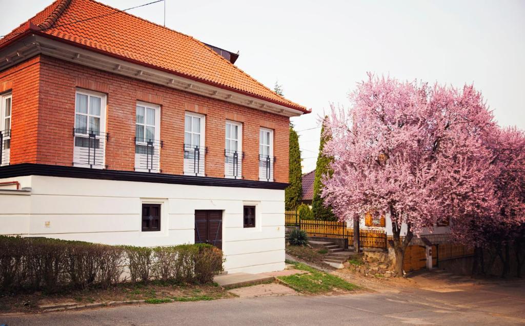 Апартаменты/квартиры  Antalóczy Winery&Apartments  - отзывы Booking