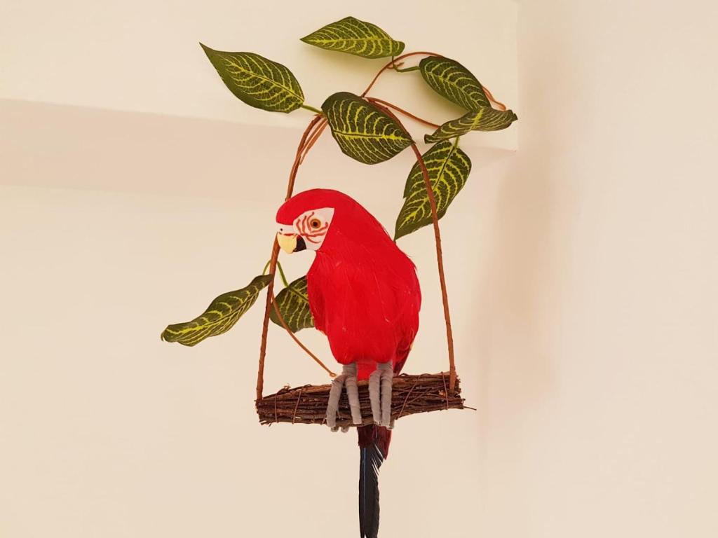 Апартаменты/квартиры  Parrot's House  - отзывы Booking