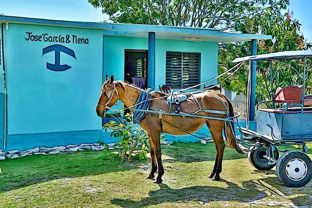 Отель типа «постель и завтрак»  Hostal Jose Garcia y Nena  - отзывы Booking