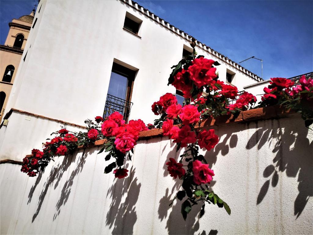 Апартаменты/квартиры  Arco Bianco  - отзывы Booking