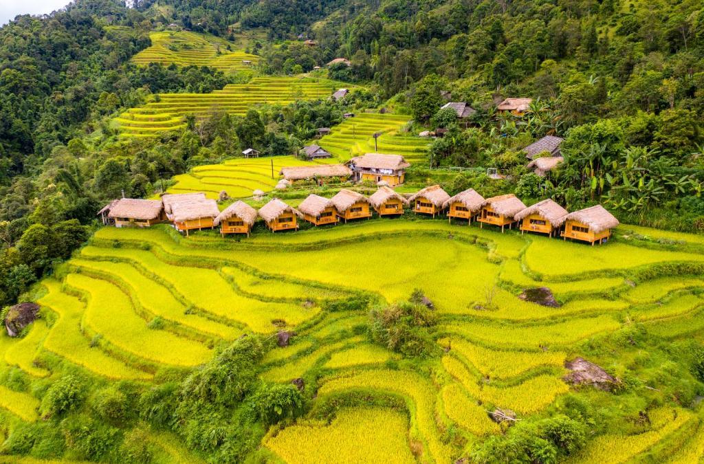Отель  Hoang Su Phi Lodge  - отзывы Booking