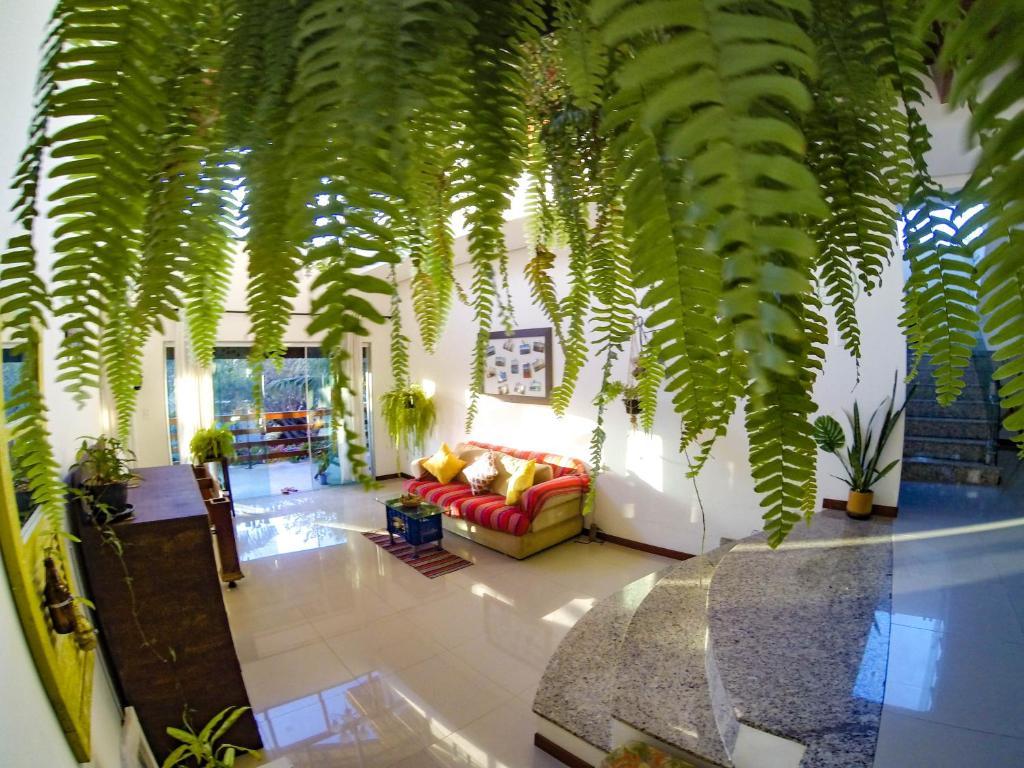 Мини-гостиница Minha casa de Geriba - отзывы Booking