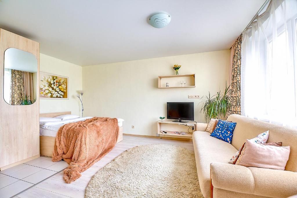 Апартаменты/квартира  Apartments Roomer 34