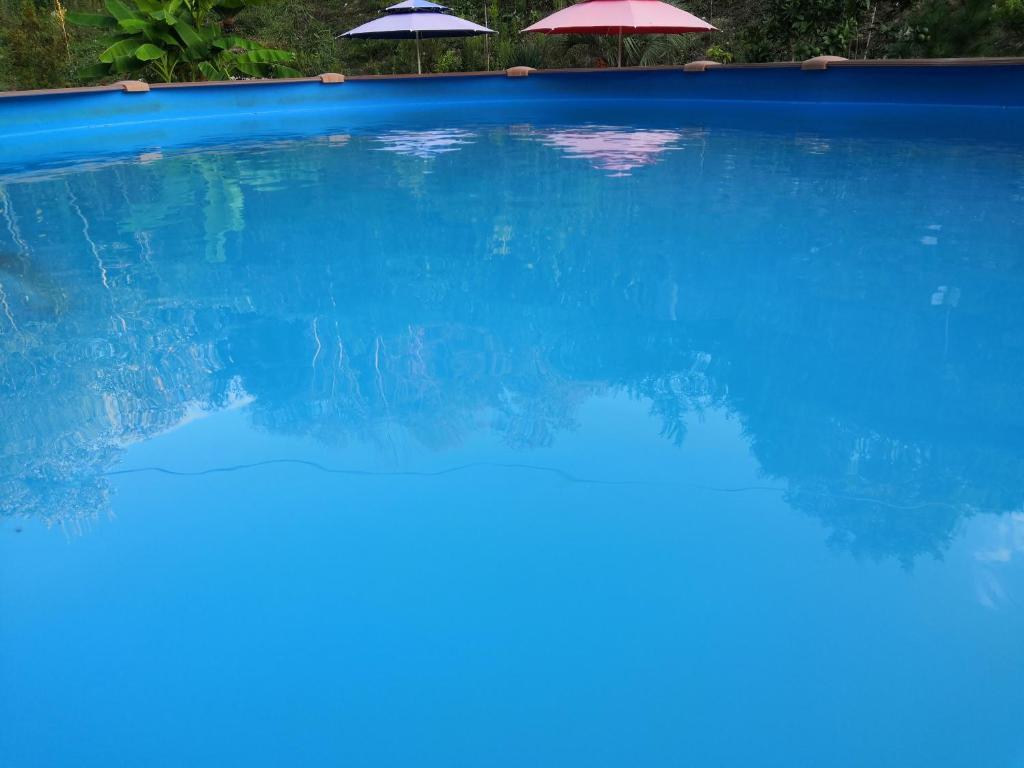 Апартаменты/квартиры  Tihaya gavan  - отзывы Booking