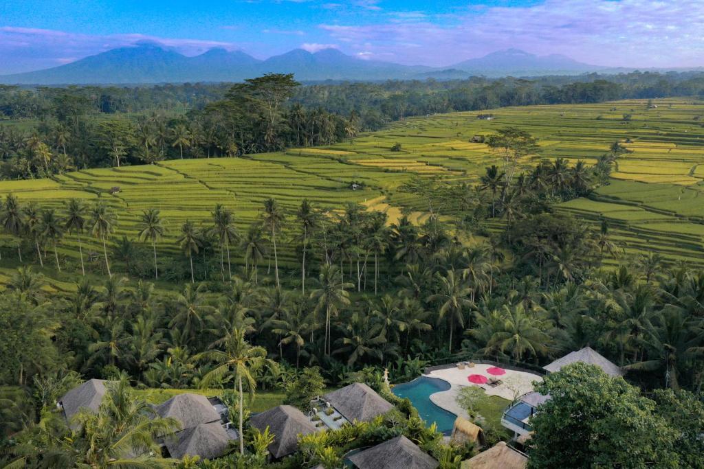 Курортный отель  Puri Sebali Resort  - отзывы Booking