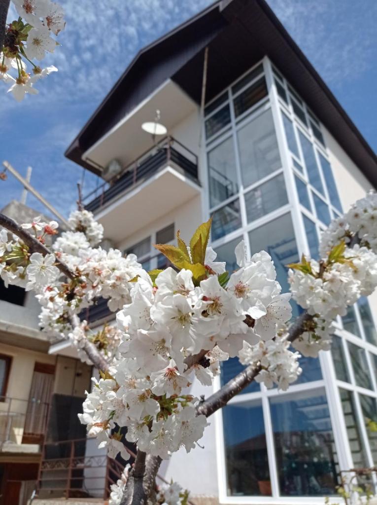 Гостевой дом  Guesthouse on Pobedy 270  - отзывы Booking
