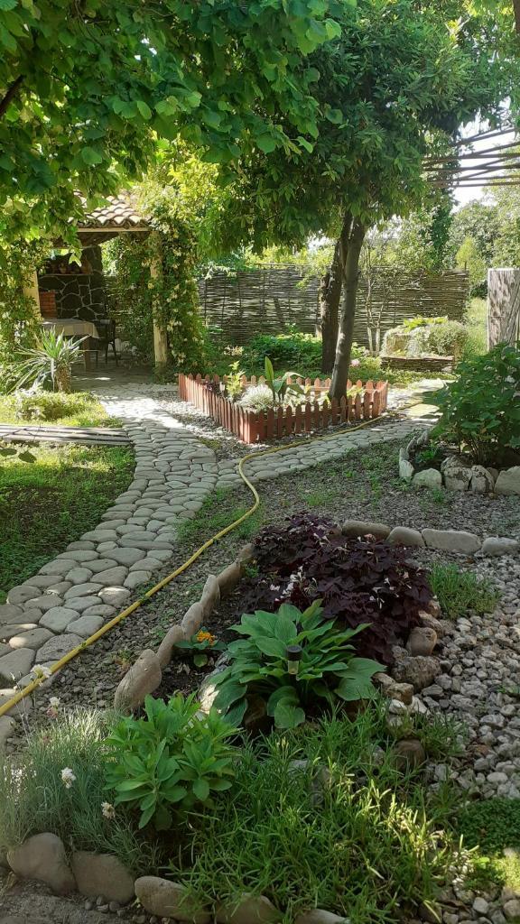 Гостевой дом  Guesthouse Cottage  - отзывы Booking