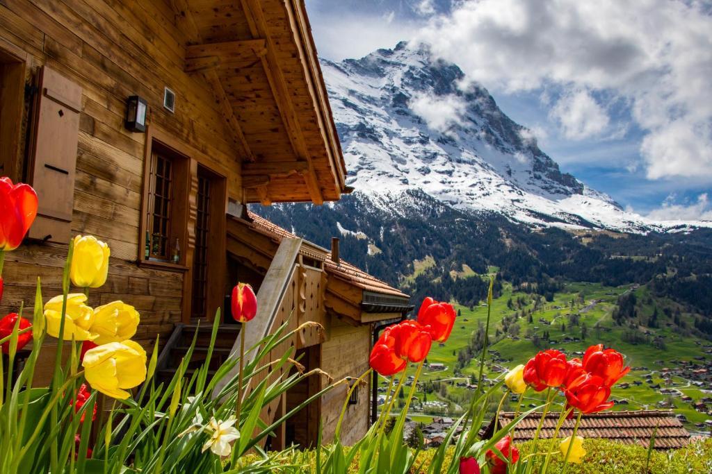 Дом для отпуска Chalet Caramelle - отзывы Booking