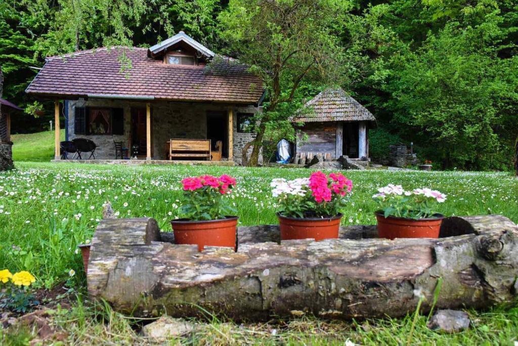 Дом для отпуска  Kuca za odmor Todorovica mlin  - отзывы Booking
