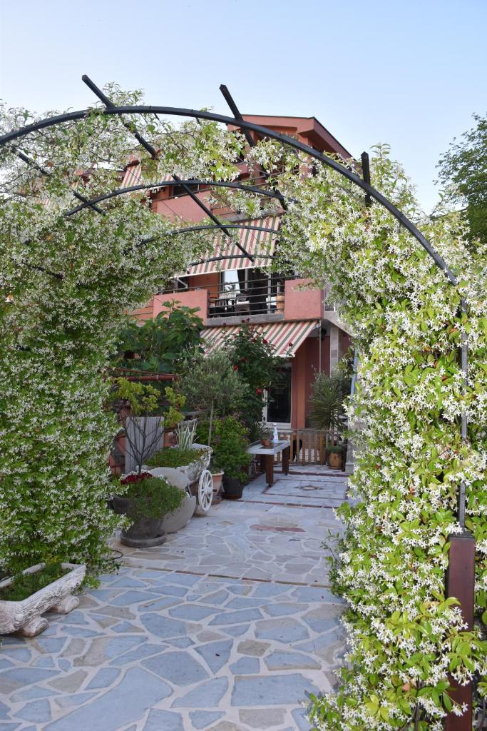Апартаменты/квартиры  Apartments Scepanovic  - отзывы Booking