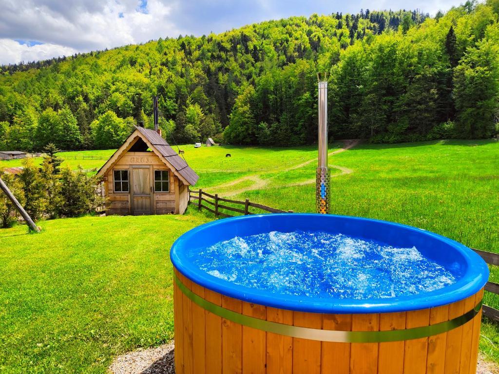 Шале  Domek Trzy Doliny Zakopane - Three Valleys Chalet Zakopane  - отзывы Booking