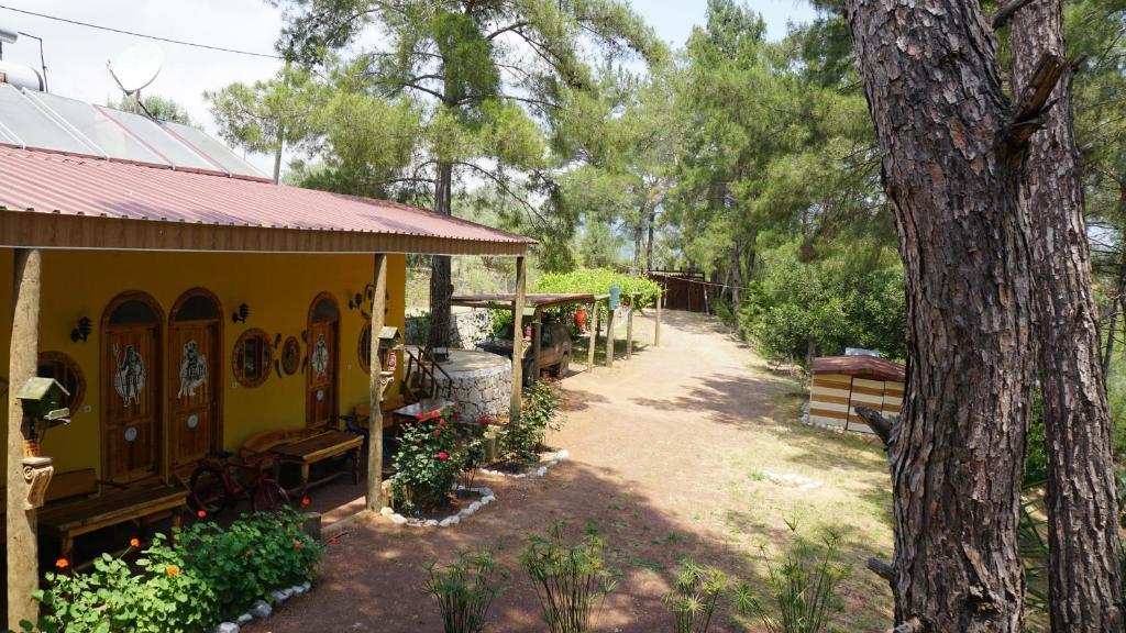 Гостевой дом  Olympos Tanrılar Kulubu  - отзывы Booking