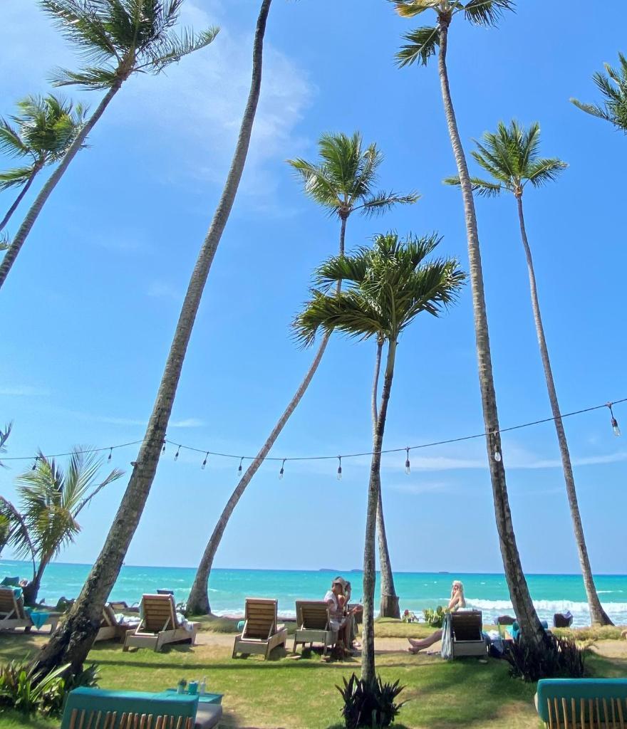 Отель  El Mosquito Boutique Hotel Playa Bonita  - отзывы Booking