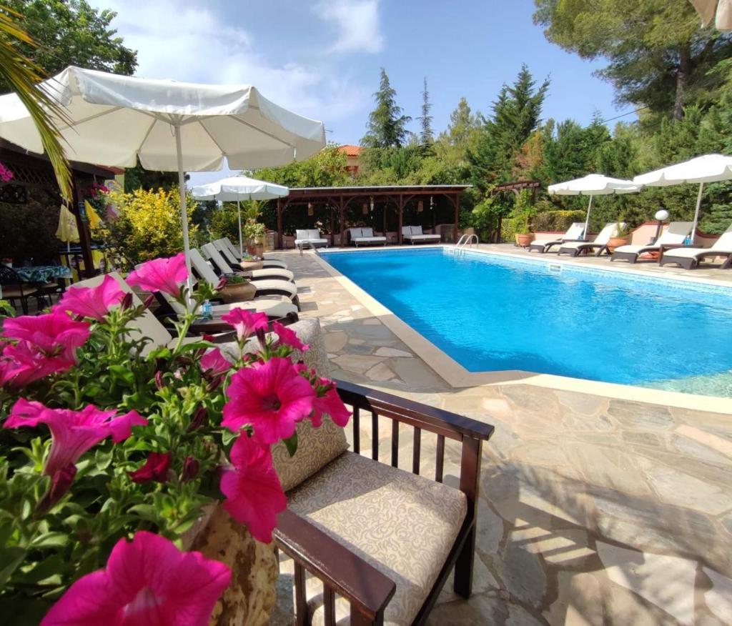 Апарт-отель  Agrili Apartments & Rooms  - отзывы Booking