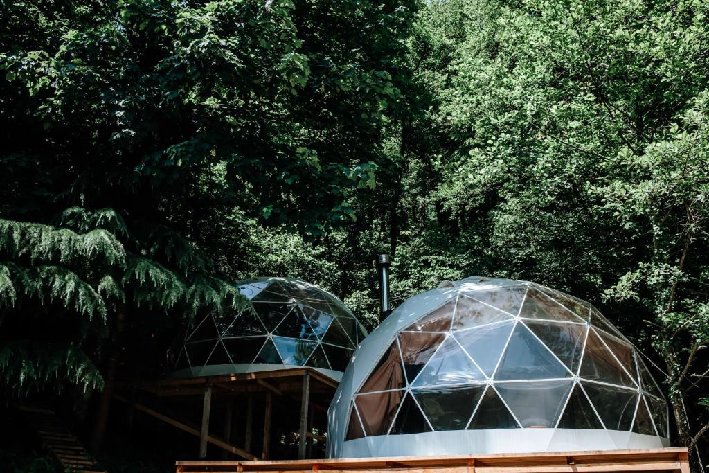 Люкс-шатер Глэмпинг СФЕРА - отзывы Booking