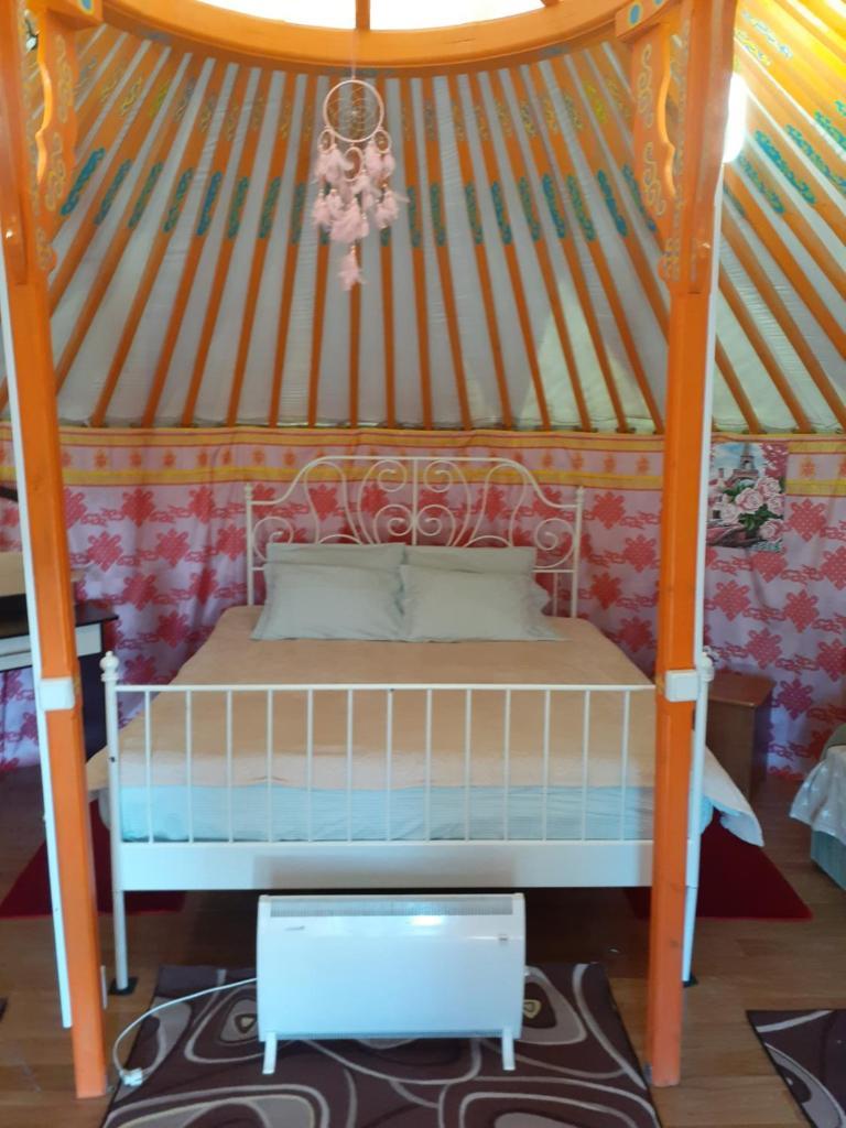 Фото  Кемпинг  Yurt Camping