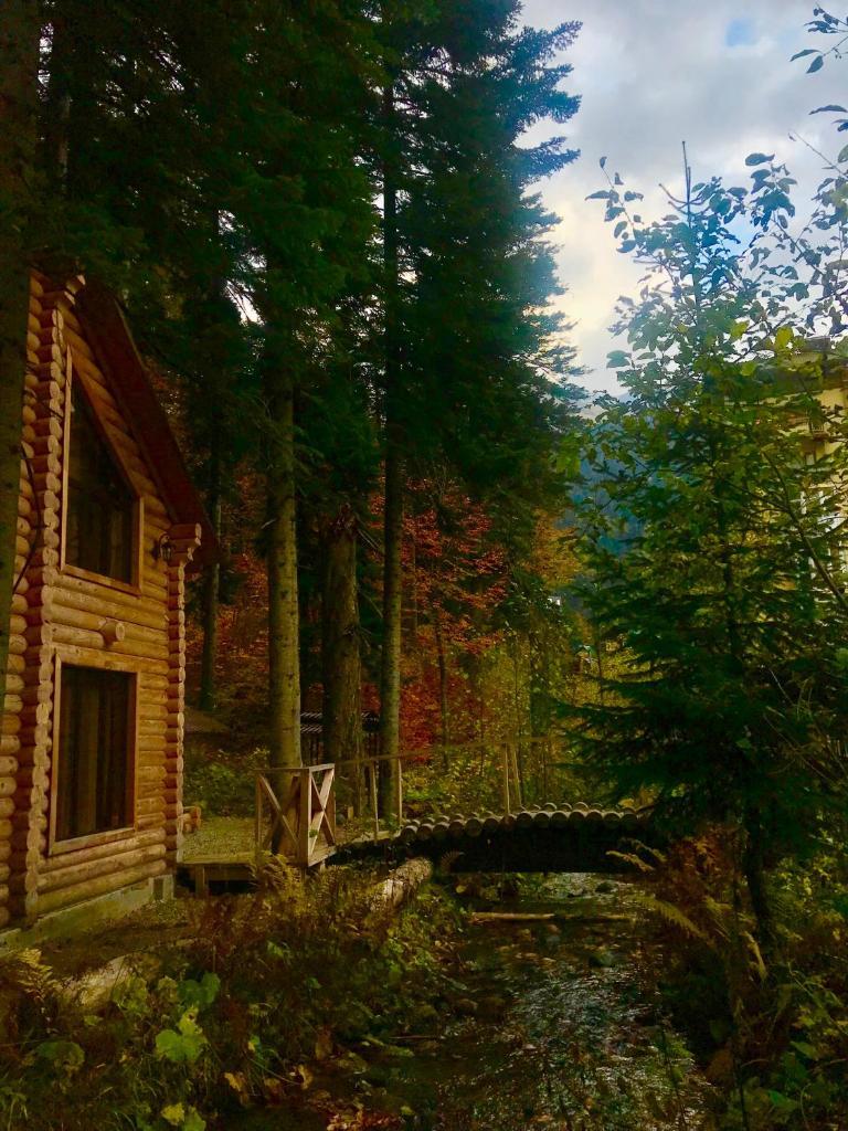 Виллы Домик в лесу - отзывы Booking