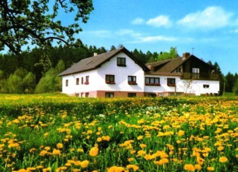 Гостевой дом  Gasthaus-Pension Zum Brandweiher  - отзывы Booking