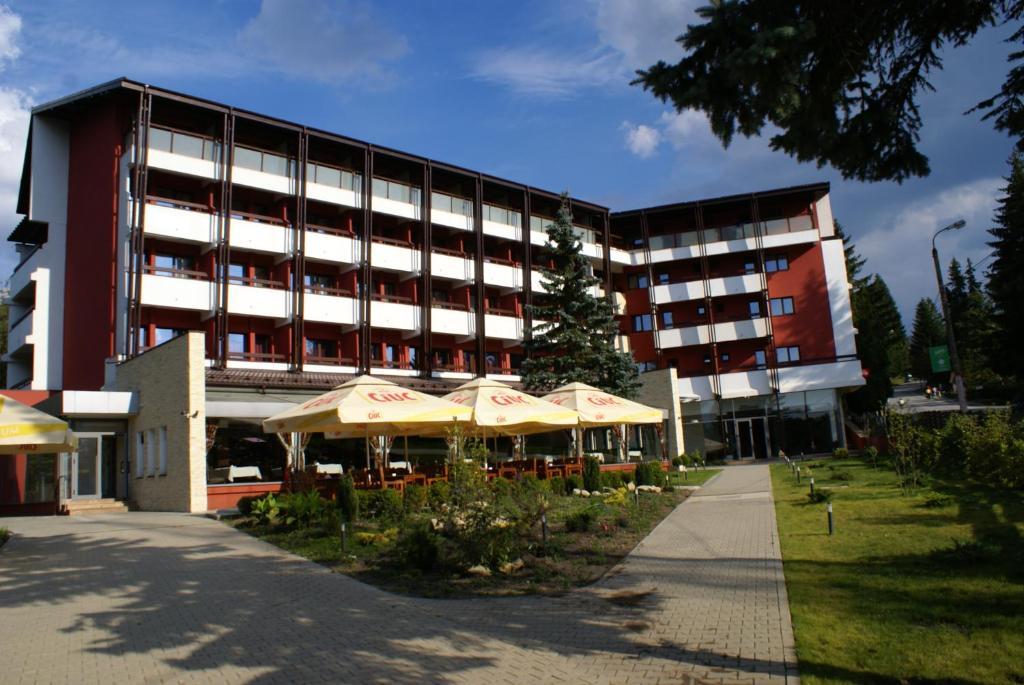 Отель Hotel Carpați - отзывы Booking