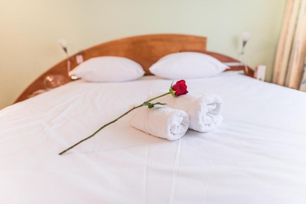 Отель Park Hotel - отзывы Booking