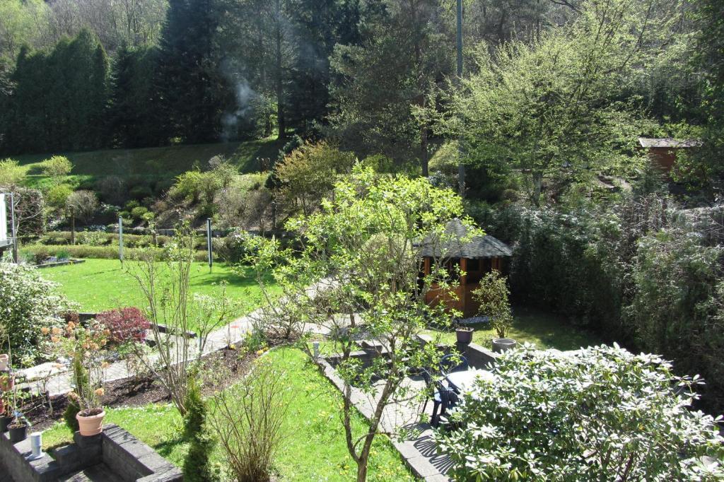 A garden outside Pension zum Rothaarsteig