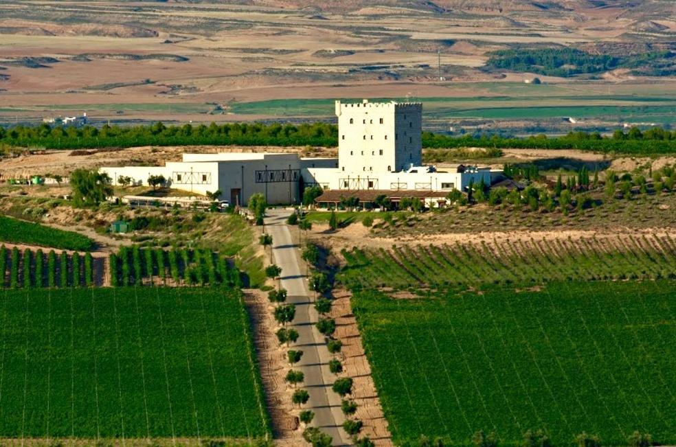 Chateau Pago De Cirsus 4