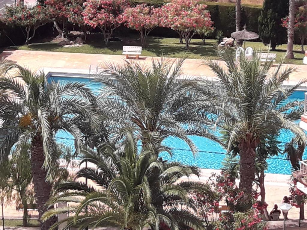 A view of the pool at Intur or nearby