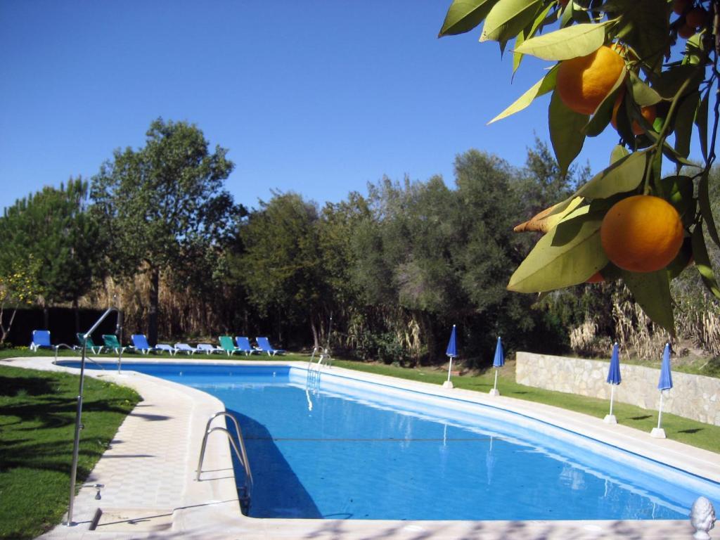 The swimming pool at or near Cortijo Huerta Dorotea