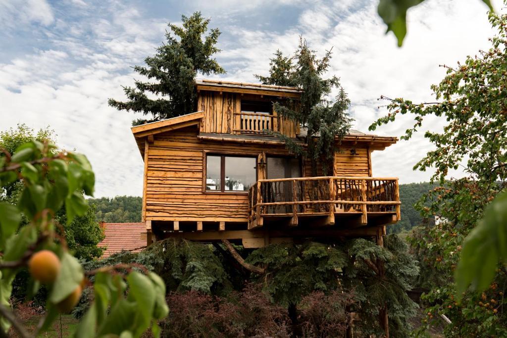 Außergewöhnliche Hotels - Baumhaus
