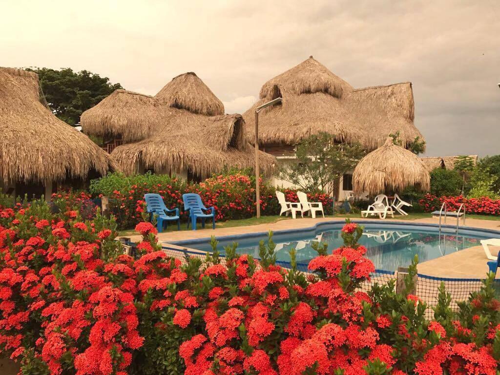 Het zwembad bij of vlak bij Palomino Breeze Hostal