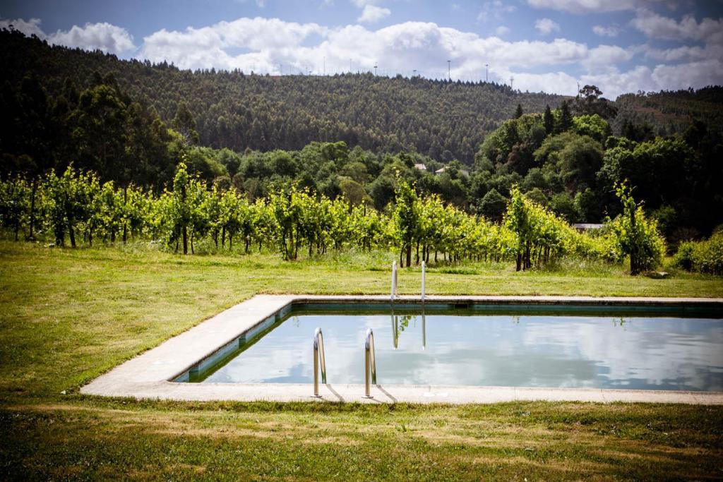A piscina em ou perto de Quinta de Lourosa