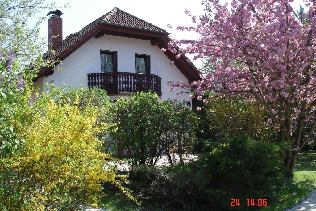 "Ferienhaus ""Werrablick-Frankenroda"""
