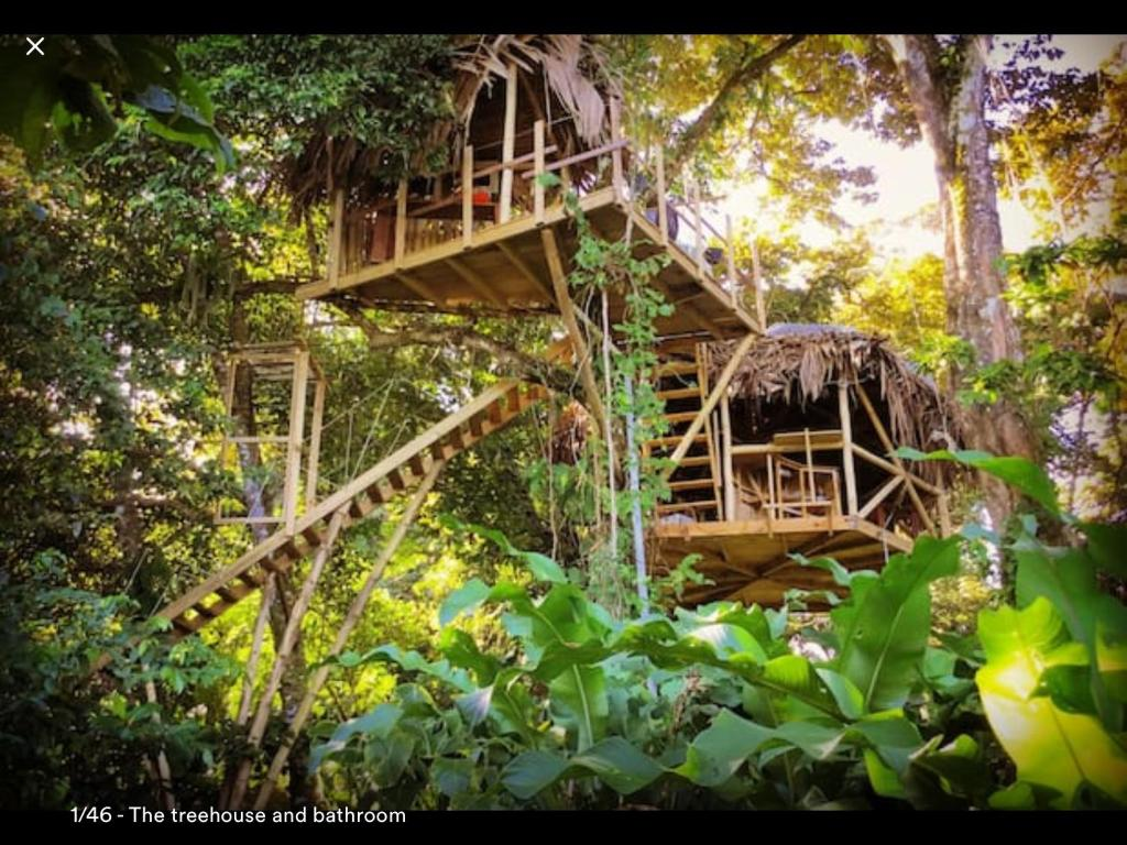 Picture of: Vacation Home Jungle Treehouse By The Sea Paunch Panama Booking Com
