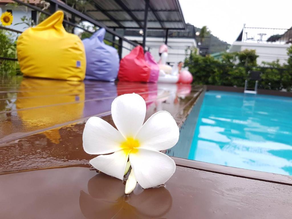 The swimming pool at or near Phannarai House