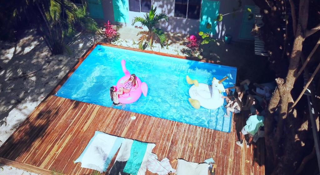 A view of the pool at La Oveja Tamarindo Hostel & Surf Camp or nearby