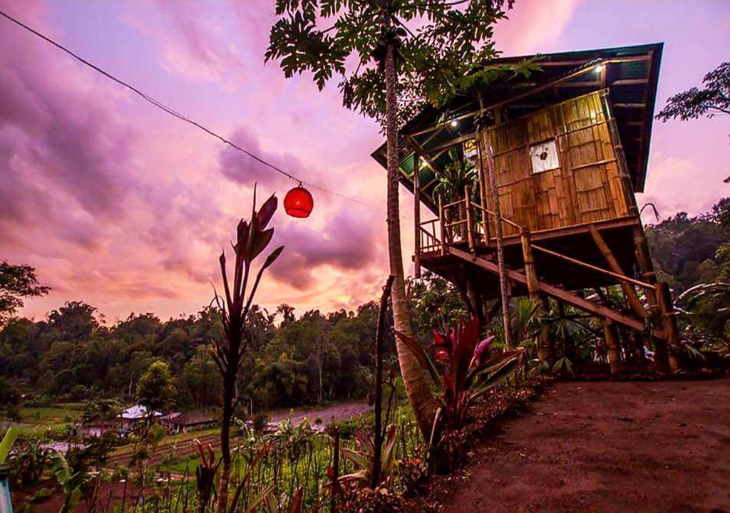 Homestay Bali Tree House Pelangi Bedugul Indonesia Booking Com