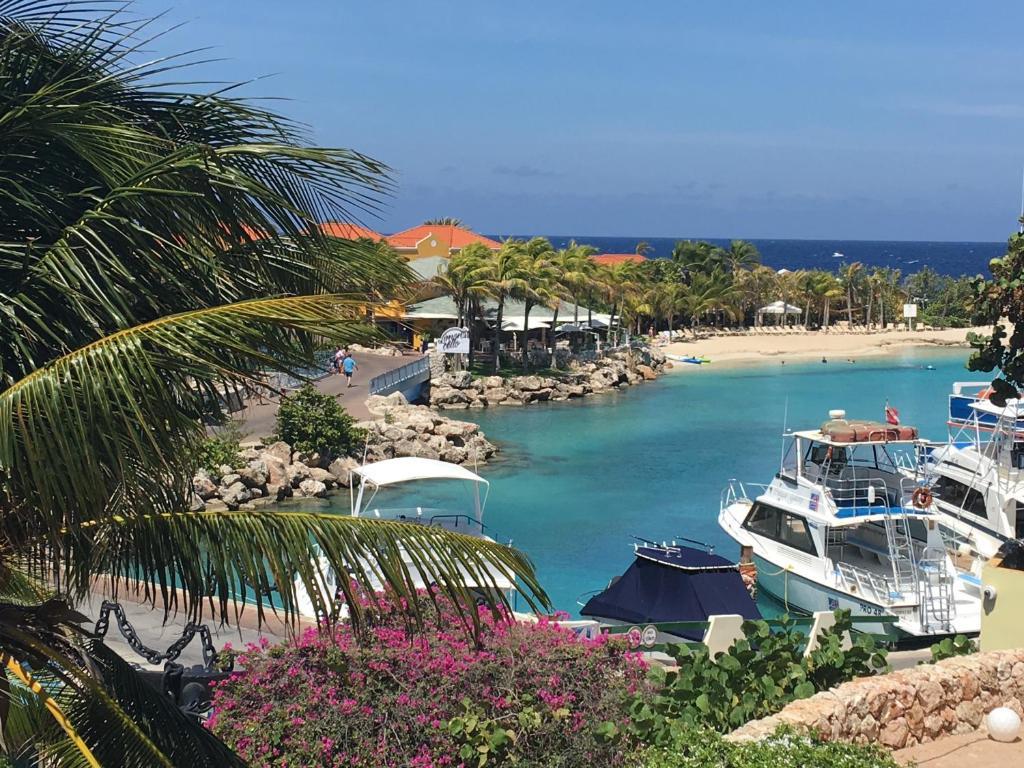 Uma vista da piscina em Ocean Sky Apartments ou nos arredores