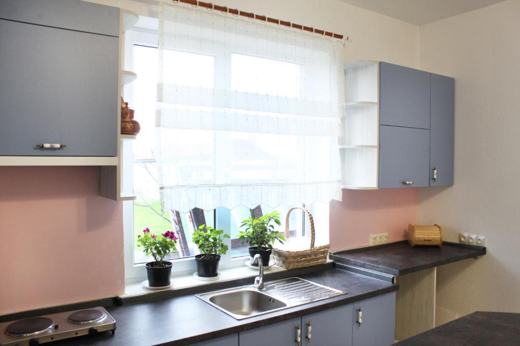 Кухня или мини-кухня в Alida Guest House