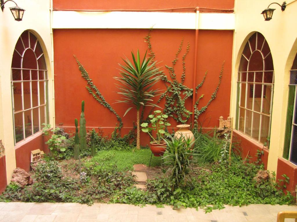 Jardin de l'établissement Posada Don Giorgio