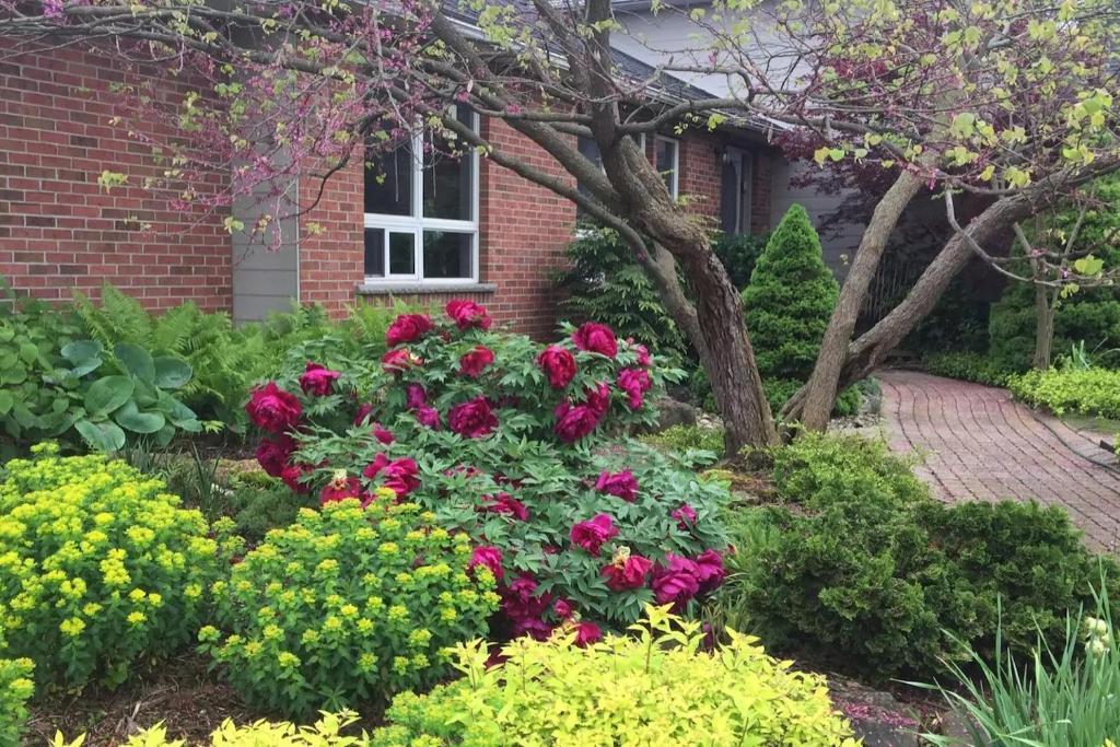Fitz Farm Manor