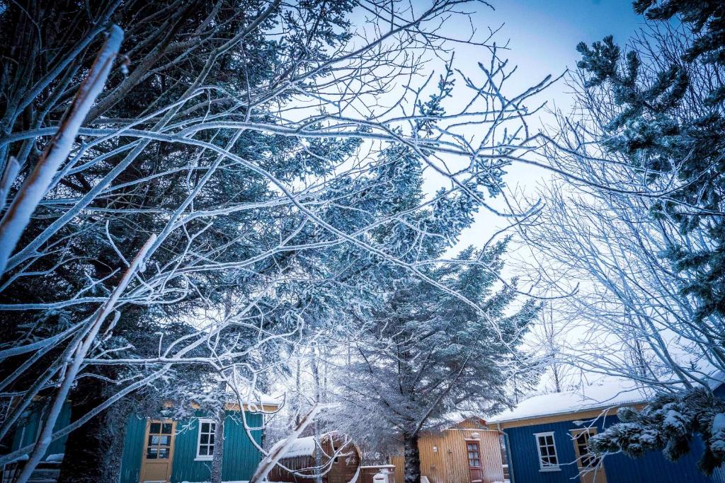 Backyard Village during the winter