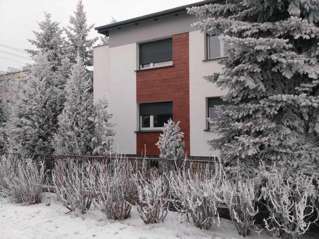 Apartament Legnicka 1 during the winter