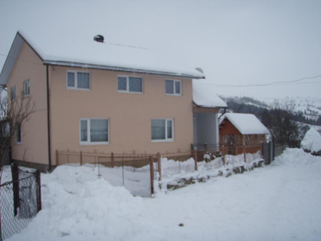Будинок в Карпахах зимой